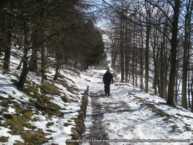 62nd Walk 5