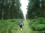 11/8/12 Trying to find a way out of the trees on Lees Moor